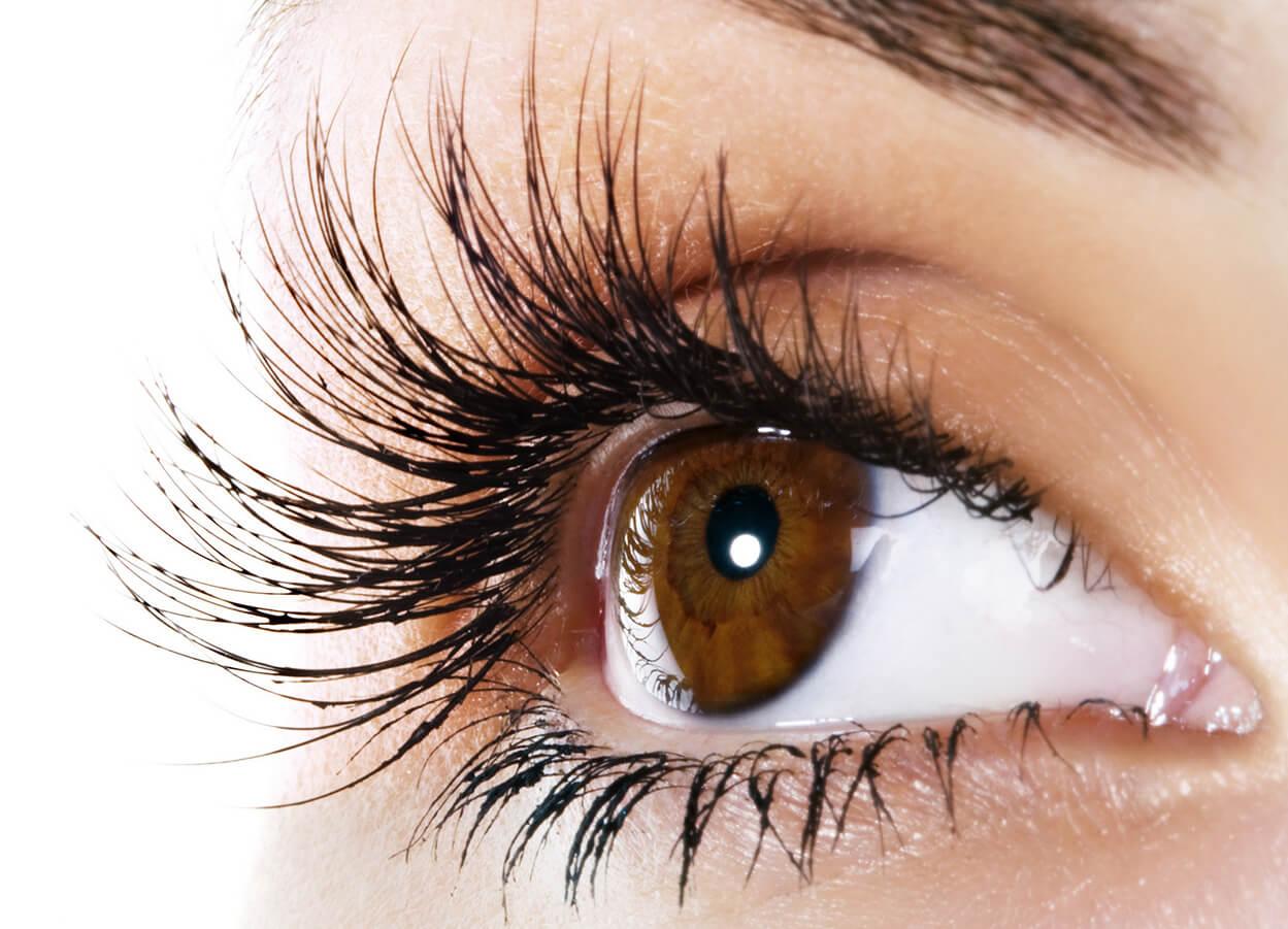 Eyelash Emporium Pure Aesthetics